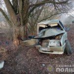 На Любарщині автомобіль в'їхав у дерево - двоє людей загинули, 2020
