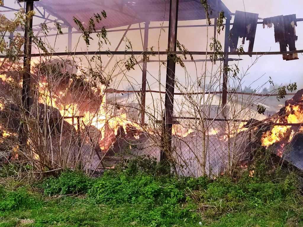 На Любарщині згорів сінник, але встигли врятувати корівники