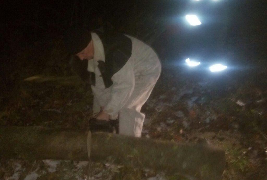 Рятувальники на Любарщині прибирали з дороги повалене вітром дерево