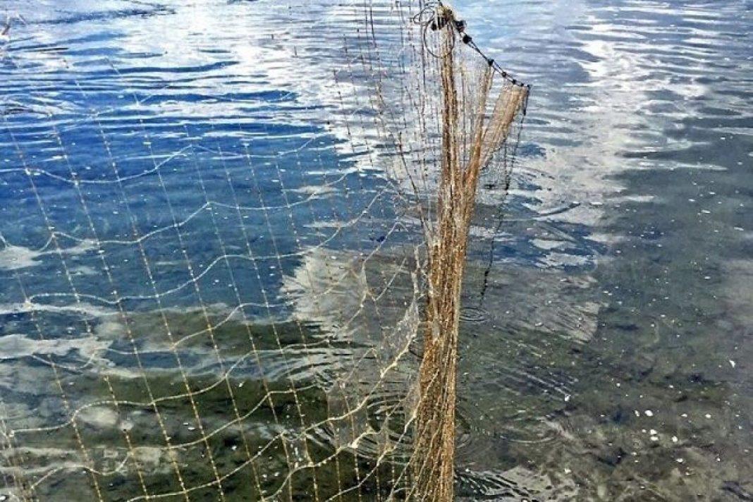 На Любарщині рибоохоронний патруль за квітень вилучив 25 одиниць заборонених знарядь лову